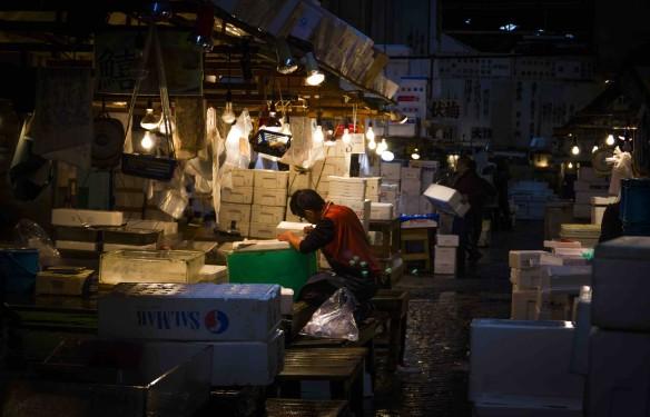 Tsukiji Fish Market - Duncan Cowles - November 2016